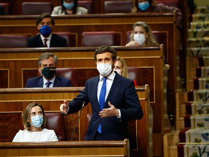 El líder del PP, Pablo Casado, durante una intervención en el Congreso.