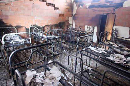 El incendio del Alt Empordà ha afectado a una superficie de 13.088 hectáreas.