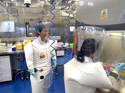 Dos investigadoras trabajan en el Instituto de Virología de Wuhan, en una imagen tomada en 2017.