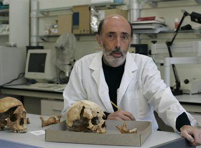 El antropólogo forense Francisco Etxeberria, en octubre de 2019.