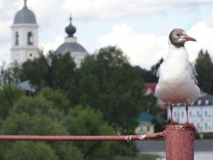 Una imagen de la ciudad rusa Myshkin.