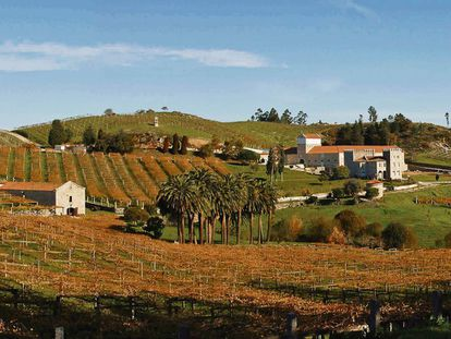 Pazo de Baión de la cooperativa Condes de Albarei, en el valle del Salnés (Pontevedra).