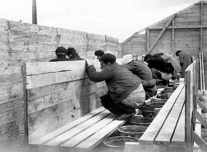 Refugiados republicanos en las letrinas <i>industriales</i> del campo de concentración de Bram, en 1939.