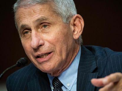 El doctor Anthony Fauci, durante una comparecencia en el Capitolio el pasado 30 de junio.