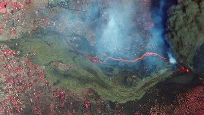 El domingo 26 de septiembre SkySat capturó la primera imagen por satélite en la que se aprecia la colada de lava. Se trata de una imagen en falso color que permite apreciar mejor las dimensiones de la erupción.