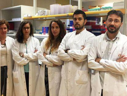 El grupo de tumores cerebrales de Massimo Squatrito, uno de los afectados en el CNIO.