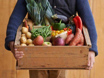 """""""Hago la compra. Paso por el tortuoso trámite de las bolsas, los guantes, los cajones y el peso, y regreso a mi domicilio arrastrando cuatro kilos de fruta y verdura. Primer dilema: ¿dónde la guardo?""""."""