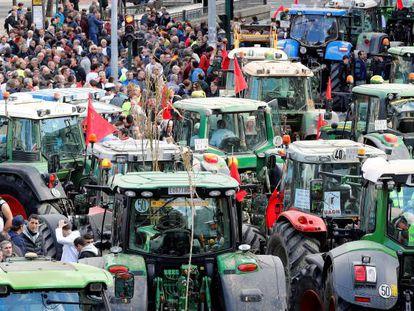 Concentración de protesta de agricultores y ganaderos en Pamplona