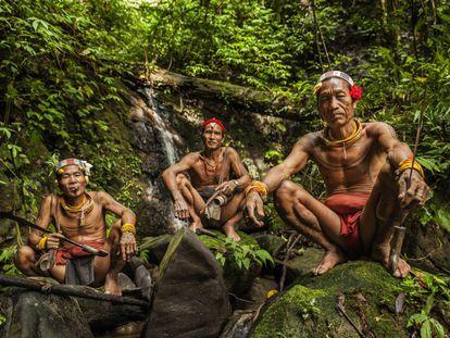 Los mentawai son un pueblo isleño que vive en un lejano archipiélago situado frente a la costa de Sumatra, en Indonesia. Han creado una forma de vida y una existencia sostenibles gracias al desarrollo de una cultura que venera todo lo que les da la vida: la tierra, las plantas, los animales, el agua y el cielo. Los nativos y su forma de vida autóctona han prosperado en las islas durante milenios. Sin embargo, en los últimos años, debido a la introducción de proyectos nacionales de desarrollo y de programas de modernización, los mentawai han experimentado cambios significativos. Actualmente, de su mundo no queda más que una minúscula comunidad tribal que vive en el interior profundo de la isla de Siberut intentado desesperadamente conservar su cultura autóctona. El sikerei (chamán) mentawai posee un conocimiento infinito de la jungla y de cómo se puede –o no se puede– emplear cada especie vegetal o animal para propiciar su supervivencia. En la foto, de izquierda a derecha, los sikerei Aman Alangi Kunen, Aman Ipae and Aman Masit Dere.