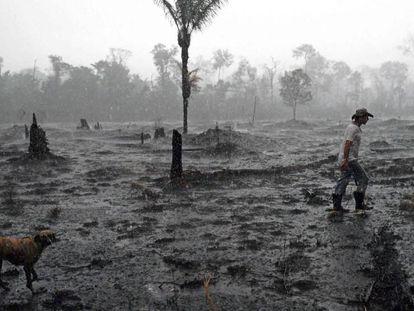 Un campesino camina en el área devastada por el incendio en la región de Porto Velho, Rondonia.