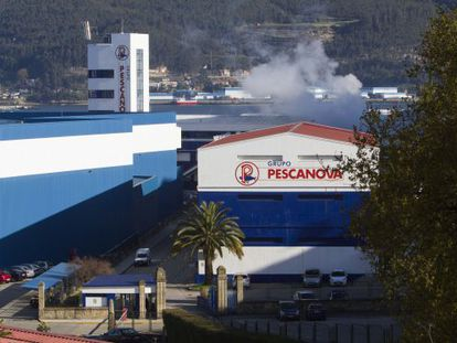 Instalaciones de Pescanova en la central de Vigo.