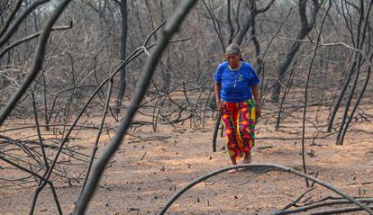 Una mujer camina entre los restos de los incendios de 2019 en El Chaco (Paraguay).