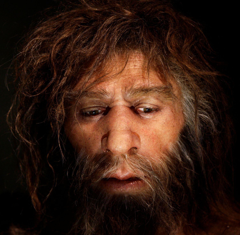 Un neandertal según la interpretación del Museo Neandertal de Krapina (Croacia).