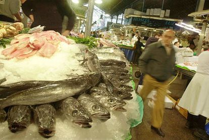 El ICIJ recogió muestras de merluza fresca y congelada en la Comunidad de Madrid.
