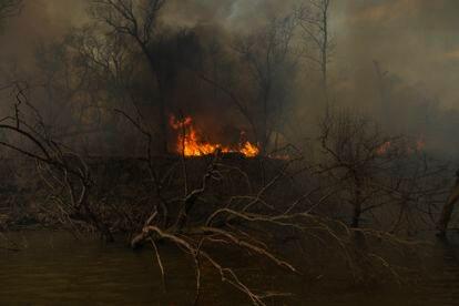 El fuego arrasando todo en su camino, en la Boca de la Milonga. En 2020, el delta del Paraná sufrió los peores incendios en más de una década, en su mayoría intencionales. El Gobierno ha anunciado que reforzará los controles en los próximos meses, los de mayor riesgo, para evitar que se repita la tragedia ambiental.