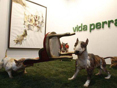 <i>Vida perra,</i> obra de Víctor Pulido en la galería MS en Arco 2010.
