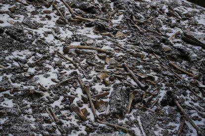 Restos de esqueletos desperdigados alrededor de la laguna Roopkund