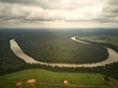 Deforestación en la zona del río dos Peixes, en Brasil.