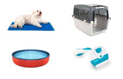 Cojines enfriadores, transportines, piscinas y cepillos para afrontar el verano con tu mascota.
