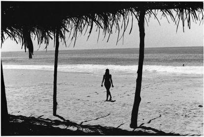 Foto de 'Trópico mexicano', 1981.