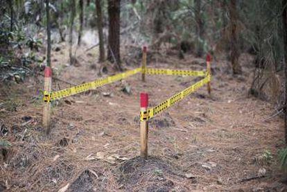 En Colombia, las minas antipersona han dejado 60 víctimas en 2019.