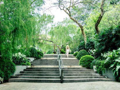 El jardín botánico de Singapur.