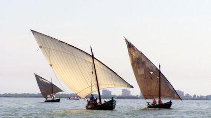 Tres barcas con aparejo de vela latina en el lago de l'Albufera.