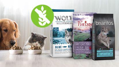 Proponemos una variedad de piensos de primeras marcas que no contienen cereales y están disponibles en la web de Zooplus.