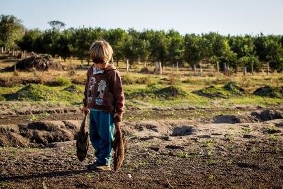 Rafael, de tres años, con dos peces secos donde antes se encontraba el azud en la propiedad que su familia alquila en Estrela D'Oeste, São Paulo.