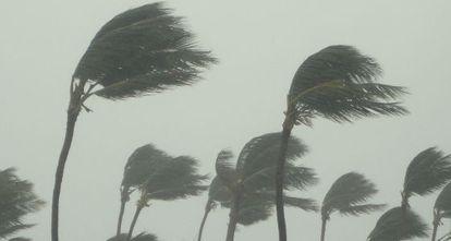 Una tormenta tropical.