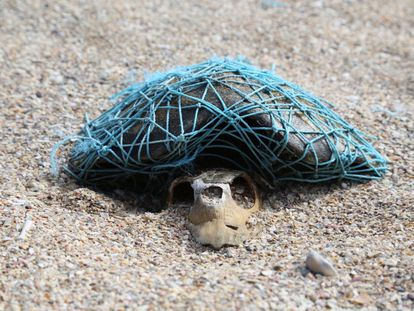 'Blue' muestra las consecuencias de la presencia de residuos humanos en los mares y océanos. Another Way Film Festival