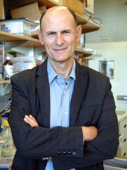 Juan Carlos Izpisúa, investigador del Instituto Salk.