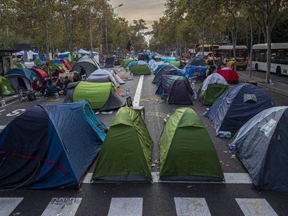 Varias tiendas de campaña bloquean el paso a los vehículos a su paso por Plaza Universitat.