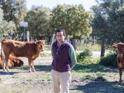 El agricultor y ganadero José Manuel Díez en su finca de Jerez de la Frontera, en Cádiz.