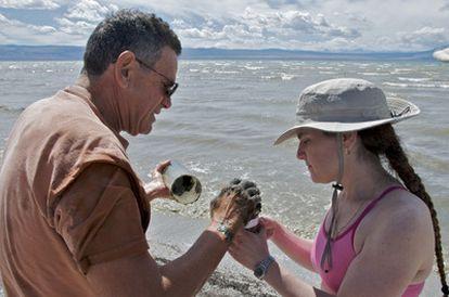 Los investigadores Felisa Wolfe-Simon (derecha) y Roland Oremland tomaron muestras de bacterias en el lago Mono, en California