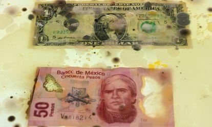 Un dólar americano y 50 pesos mexicanos en una misma caja.