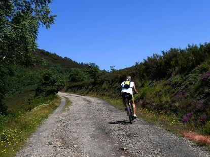 Un ciclista sube por una pista de pronunciada pendiente en el Parque Natural de Fuentes del Narcea, Degaña e Ibias.