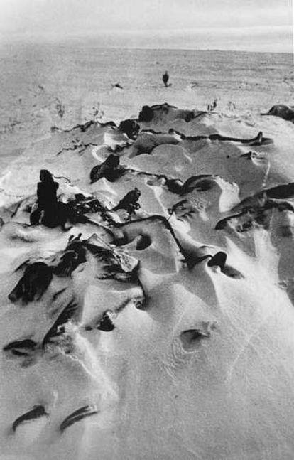 Soldado muertos, enterrados en la nieve en Stalingrado.