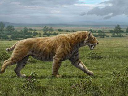Un estudio disecciona la anatomía de los depredadores capaces de abatir un mamut
