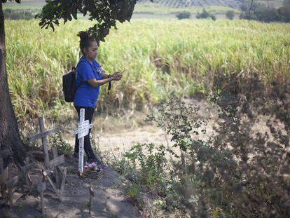 Una mujer observa el predio donde fueron localizadas fosas clandestinas en Nayarit, México.