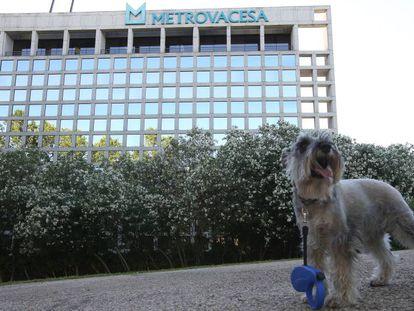 Un edificio de Metrovacesa en Boadilla del Monte (Madrid), en una imagen de archivo.