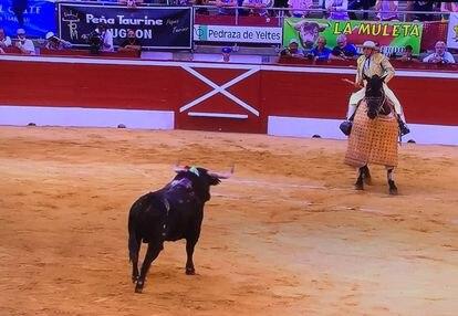 El sexto toro de la tarde acude al caballo.