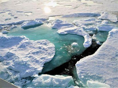Charcos de agua dulce causados por la nieve derretida la capa de hielo. / AWI