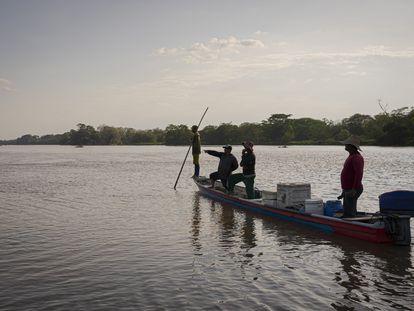 Pescadores se detienen a observar a unos hipopótamos en el río Magdalena a su paso por Puerto Triunfo.