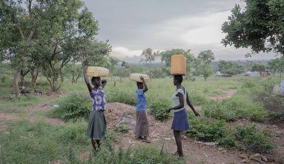 Tres mujeres llevan bidones llenos de agua desde un pozo hasta sus hogares en el campo de refugiados Rhino Camp, en Uganda.
