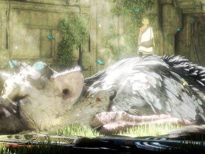 Imagen del videojuego de PlayStation 4 'The last guardian'.