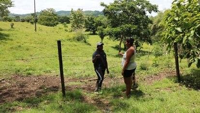 Linderos en una zona rural del departamento de Córdoba, en Colombia.