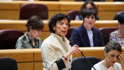 Isabel Celaá anunció el mes pasado que su ministerio recurriría por vía judicial el pin parental.