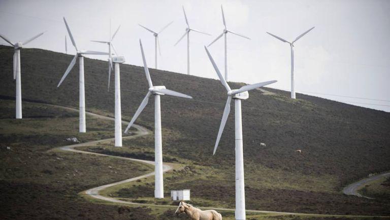 Un parque eólico, con los característicos molinos de grandes dimensiones.