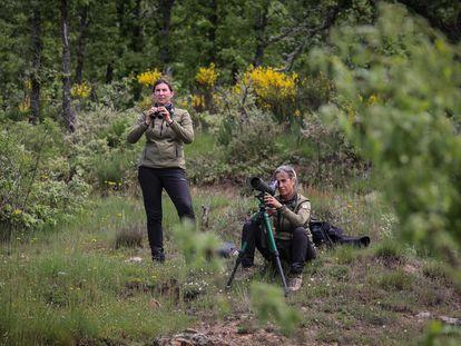 Elsa Sanchez (de pie) y Begoña Almeida, en una jornada de trabajo de la Patrulla Oso en las montañas palentinas.